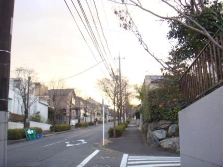 20100108.jpg