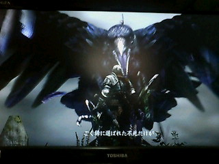 ダークソウル004
