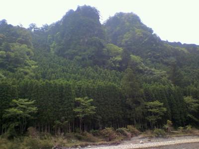 kozagawa008.jpg