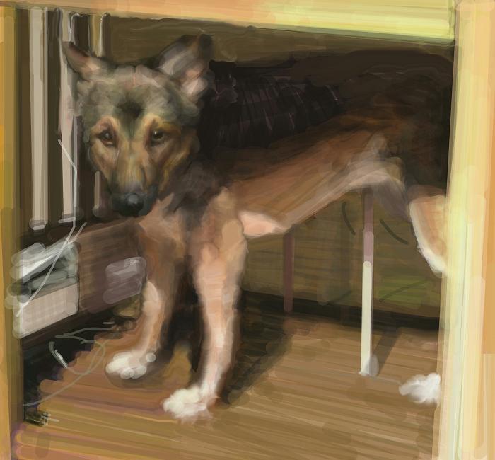 犬絵 隠れんぼ