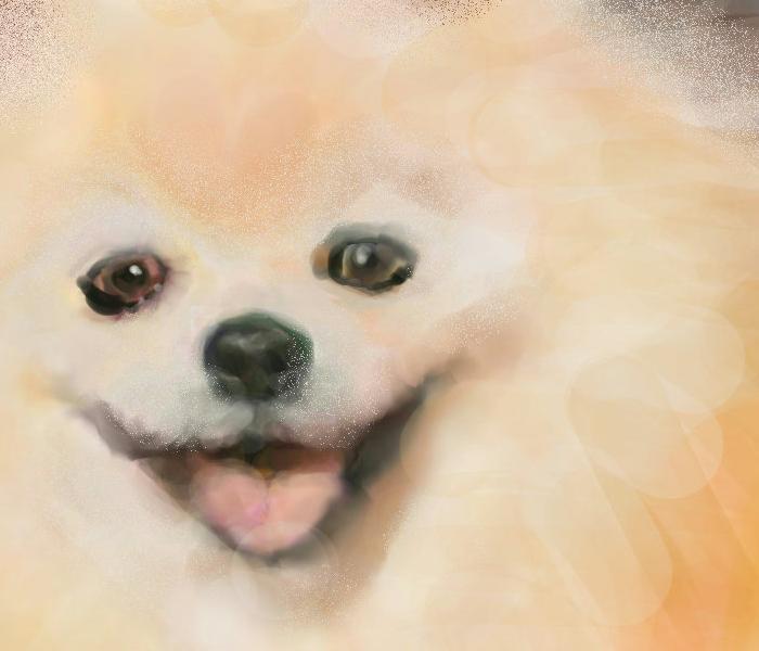 犬絵 ハtロ ズーム