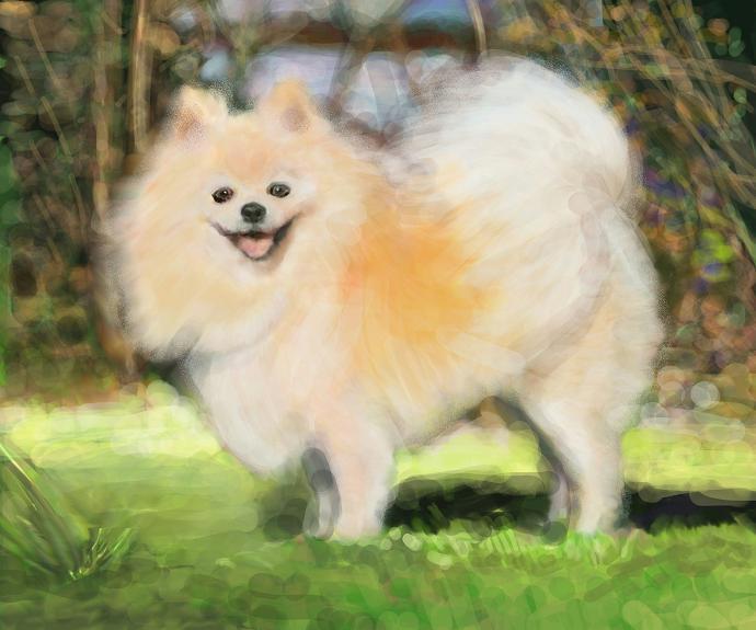犬絵 ハロ 690