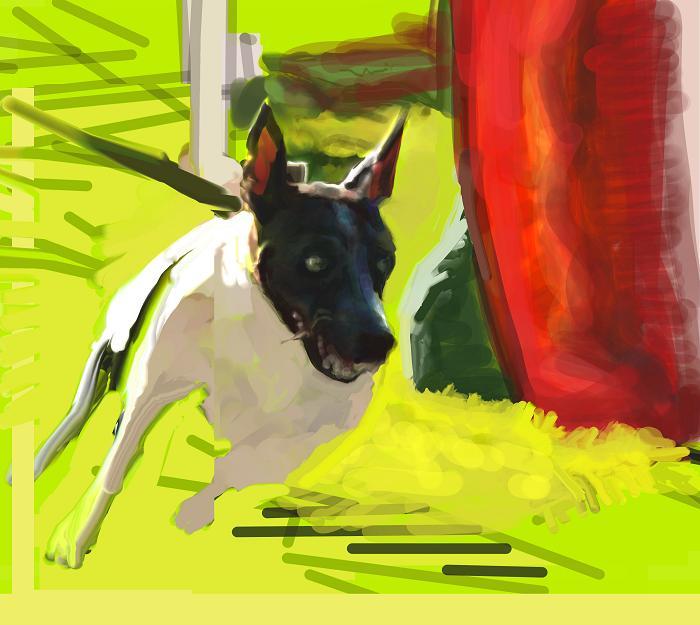 犬絵 アジる つるつるハウンド700中途