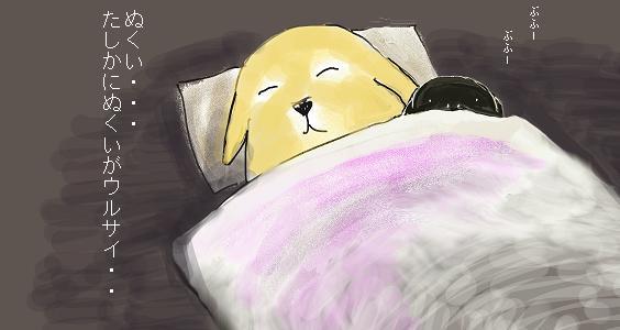 寝る時は・・・。