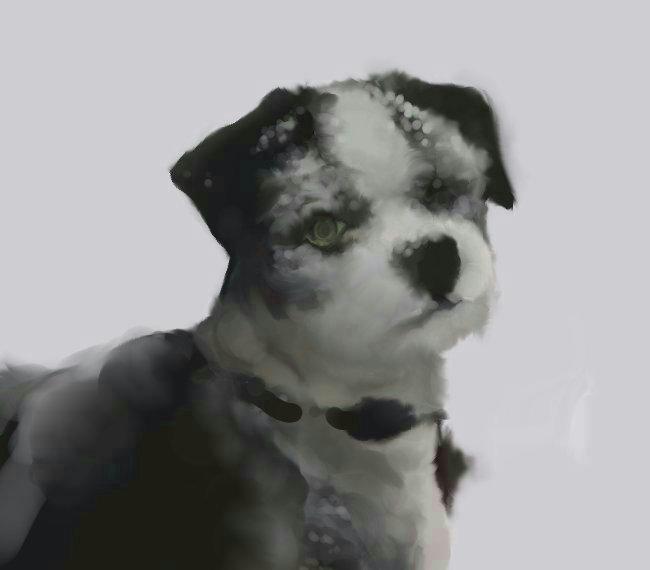 犬絵 ウゴの続き 修正