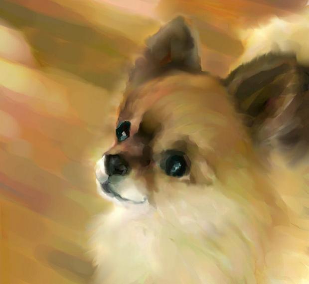 犬絵 犬イラスト ある日の幸せ
