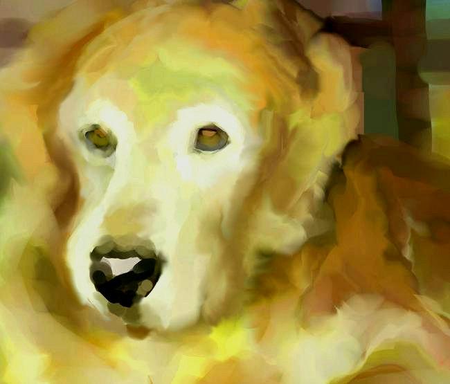 犬絵 マイドーター650 修正トーン