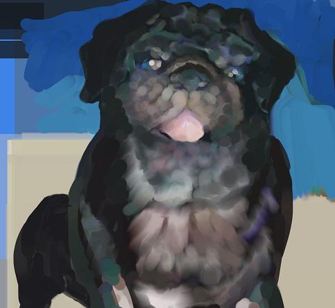 犬絵 aカラス