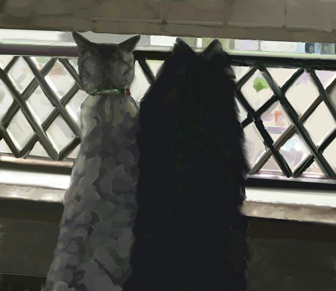 犬猫絵 覗くコンビ