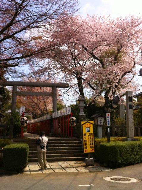 桜H 1八幡神社