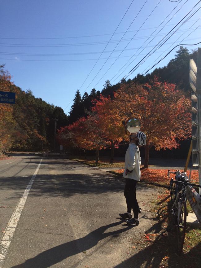 aogaki_4.jpg