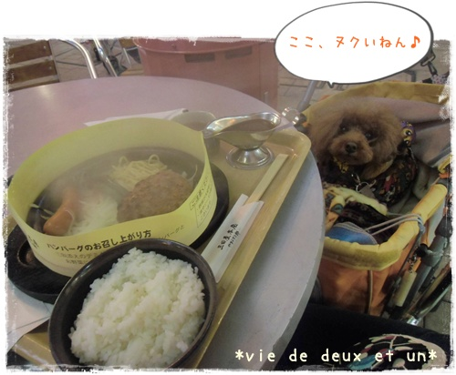 20140126blog2.jpg