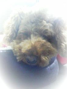 LOVE☆KURU-091026_102513_ed.jpg