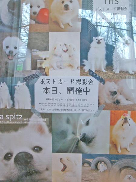 LOVE☆KURU border=