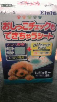 LOVE☆KURU-110505_201340.jpg