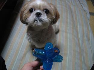 おやつを詰めたおもちゃ