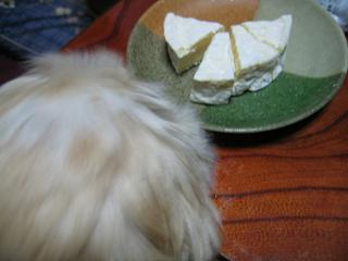 くるみとチーズ2
