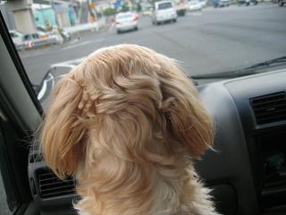 車にて・・・