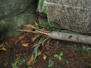 竹と配管2