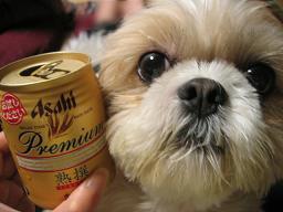 ビールとくるみ