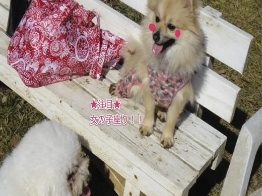 女子座り_convert_20120128210445