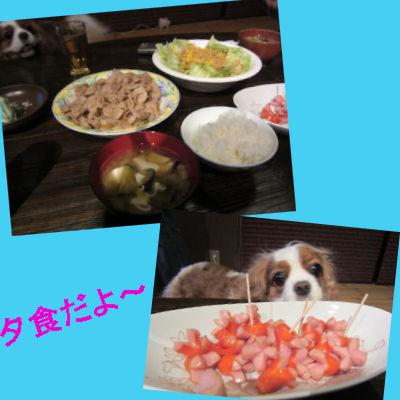 2011.7.10夕食