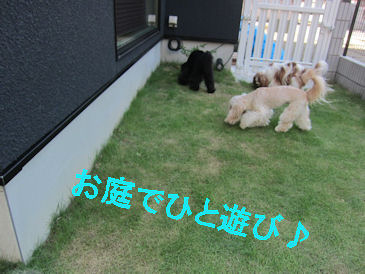 2011.7.10お庭でひと遊び!