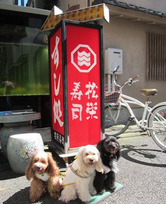 2011.7.11松栄さん