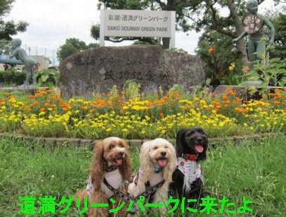 2011.7.18道満