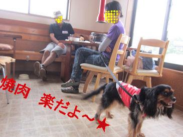 2011.7.31楽