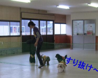 2011.7.31すり抜け~