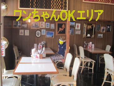 2011.8.14わんOK