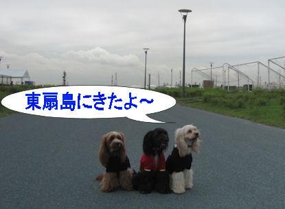 2011.8.20東扇島