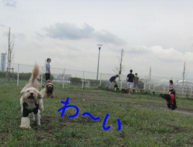 2011.8.20わーい