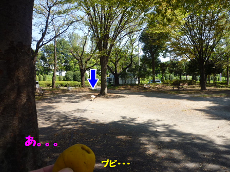2011101-2.png