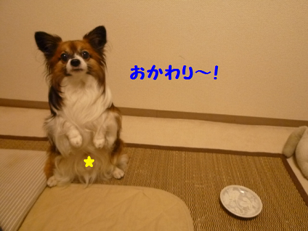 20111012-12.png