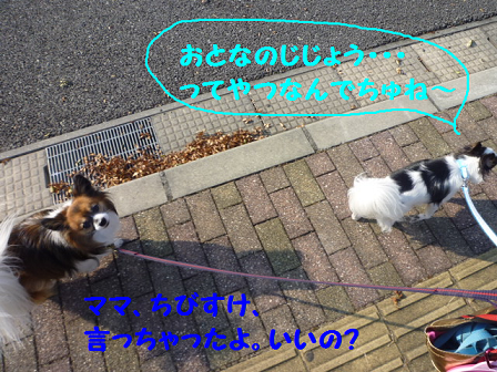 2011112-4.png
