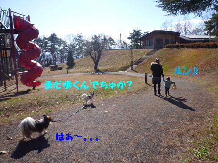 20111213-3.png
