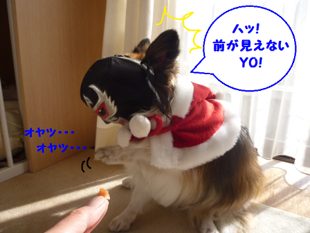 20111224-4.png