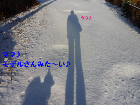 20111225-2.png