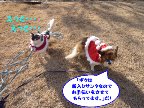 20111225-5.png
