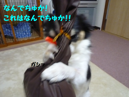 2011129-2.png