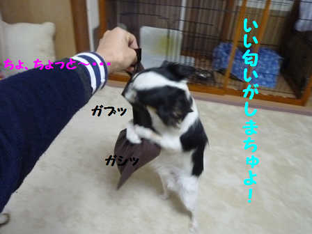 2011129-3.png