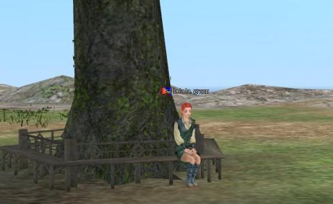 木陰でおひるね