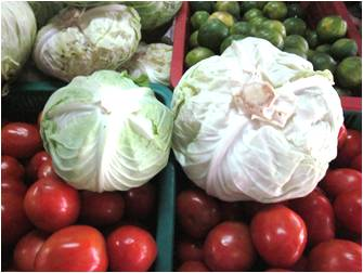 ラオス 野菜