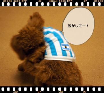 20111105_clothes5.jpg