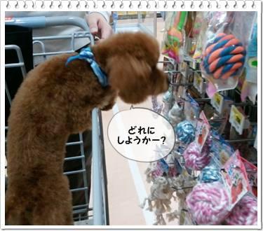 20111112_shopping4.jpg