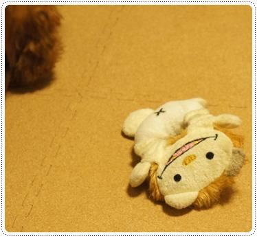 20111219_taicho1.jpg
