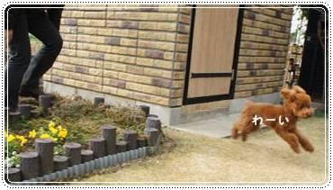 20120102_newyear9.jpg