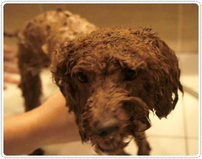20120224_ bath2
